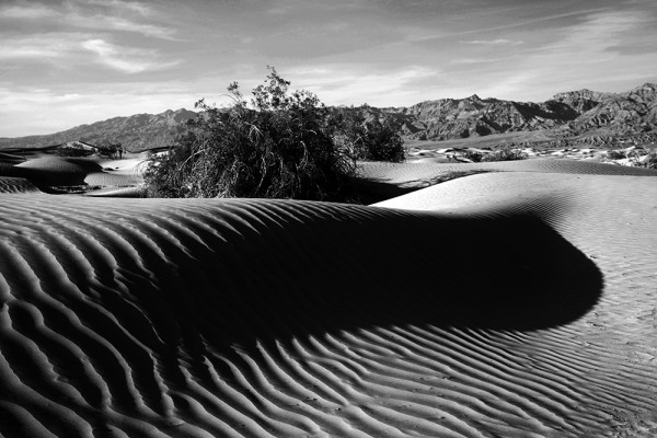 May the Heat be with you. The Mesquite Sand Dunes are a popular film setting, among others for Star Wars.